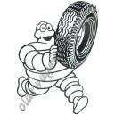 tôle peinte emboutie découpée bibendum pneu 300x430mm